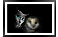The Owl and the Pussycat, Framed Mounted Print