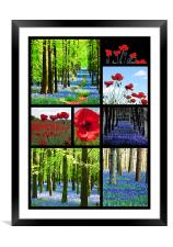Poppies and Bluebells, Framed Mounted Print
