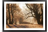 Kent countryside, Framed Mounted Print