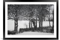In the dark woods, Framed Mounted Print