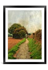 Country  Footpath, Framed Mounted Print