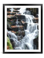 Autum leaves, Framed Mounted Print