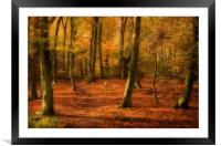 Autumn Woods colour, Framed Mounted Print