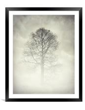 the winter tree, Framed Mounted Print