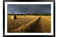 Straw bales and sunlight, Framed Mounted Print