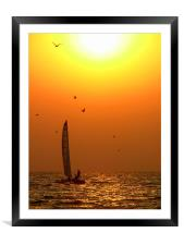 Cat Amongst the Birds - Catamaran and Seagulls at , Framed Mounted Print