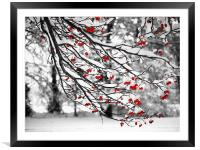 Very Berry, Framed Mounted Print