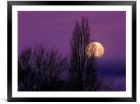 Abstract Moon, Framed Mounted Print