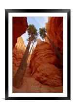 Bryce Canyon walls, Framed Mounted Print