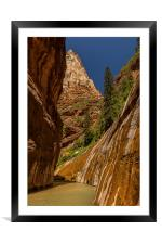 The Narrows, Zion NP, Framed Mounted Print