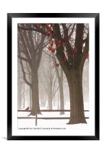 WINTER IN THE WOODS, Framed Mounted Print