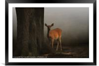 THE DEER AND THE TREE, Framed Mounted Print