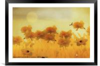 DAFFODILS IN THE SUNSHINE, Framed Mounted Print