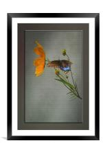A BRIEF VISIT, Framed Mounted Print