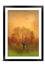 The Painted Tree, Framed Mounted Print