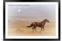 Running Free, Framed Mounted Print