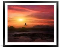A New Sunset, Framed Mounted Print