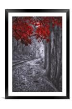 Tracks Through The Forest, Framed Mounted Print