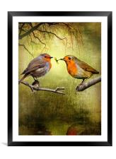Robin Presents, Framed Mounted Print