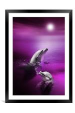 Dolphin Delights, Framed Mounted Print
