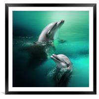 Playful Dolphins, Framed Mounted Print