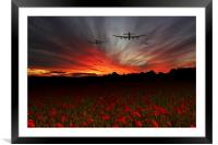A Poppy Field Dream , Framed Mounted Print