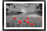 Mosquito Tribute , Framed Mounted Print