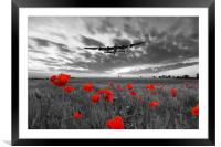 Field Of Dreams - Red, Framed Mounted Print