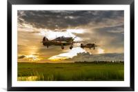 Hurricanes Come Home, Framed Mounted Print