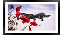 Lancaster Poppy Approach, Framed Mounted Print
