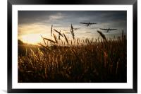 The Lancaster Bombers, Framed Mounted Print