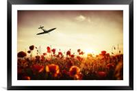 Spitfire The Final Sortie, Framed Mounted Print