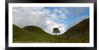 Sycamore Gap III, Framed Mounted Print