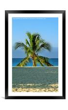 Lone Palm Tree, Framed Mounted Print
