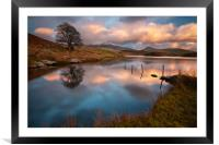 Llyn y Dywarchen, Framed Mounted Print