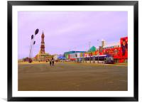 A Walk along the Prom. , Framed Mounted Print