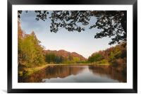 Autumn in the Lakes , Framed Mounted Print