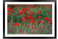 Remember Them, Framed Mounted Print