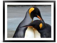 A word in your ear. , Framed Mounted Print