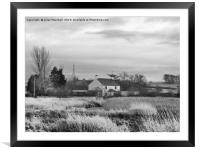 Out in the Country., Framed Mounted Print