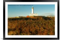 TALL ND WHITE, Framed Mounted Print