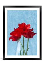 Tulips 2, Framed Mounted Print