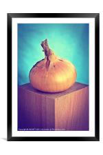 Onion, Framed Mounted Print