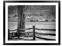 Puffing Billy, Framed Mounted Print