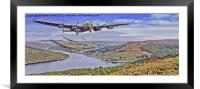 Merlins in the Valley, Framed Mounted Print