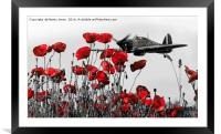 Hawker Hurricane Through the Poppies, Framed Mounted Print