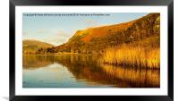 One Golden Moment In Autumn, Framed Mounted Print