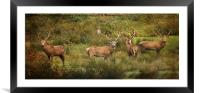Stag Party The Boys, Framed Mounted Print