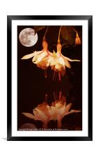 The Flower and the Moon, Framed Mounted Print