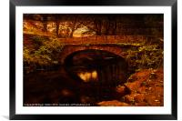 Evening at Rivelin, Framed Mounted Print
